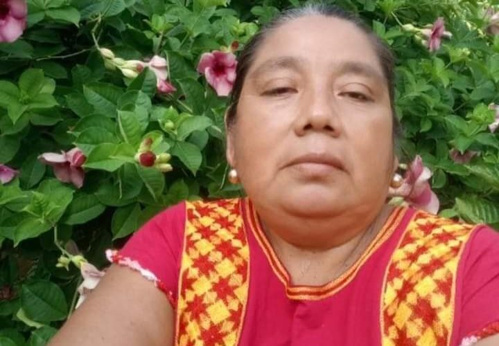 Encarcelan a profesora ayuujk e hijo por oponerse a obra de Corredor Interoceánico en sus tierras; Ucizoni exige su liberación (Oaxaca)