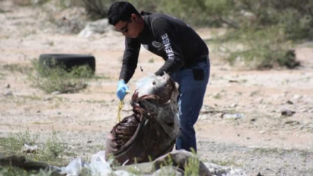Desaparecidos en un abismo de impunidad (Chihuahua)