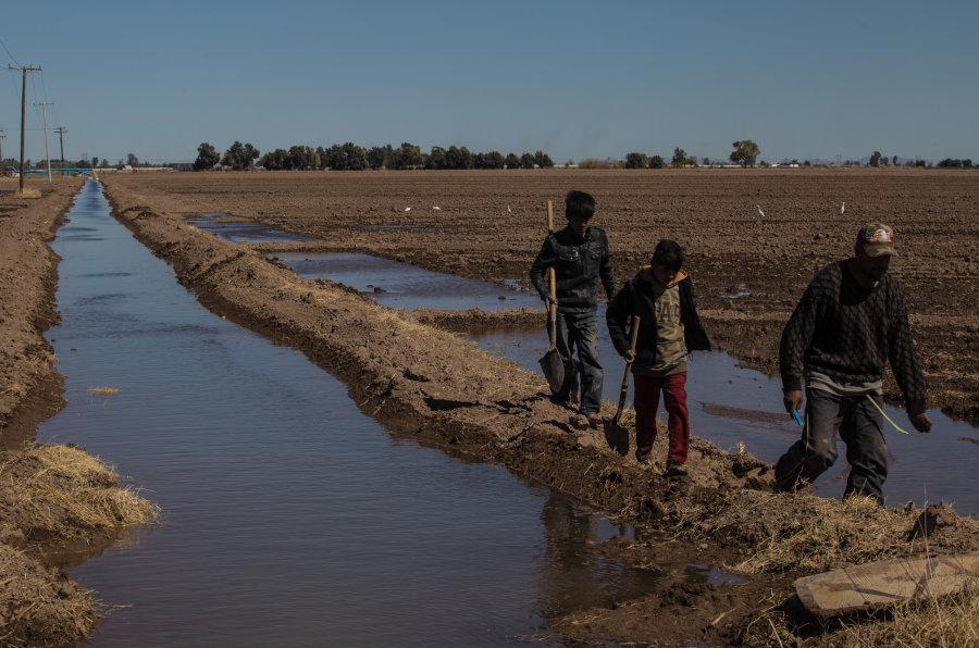 El sinsentido de la explotación del agua del que se acusa a Constellation Brands en una región con sequía extrema (Baja California)