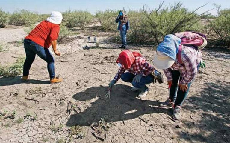 Continúa búsqueda de desaparecidos en límites de SLP y Tamaulipas