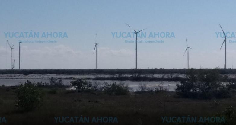 En la ilegalidad los 20 proyectos de energía renovable en Yucatán