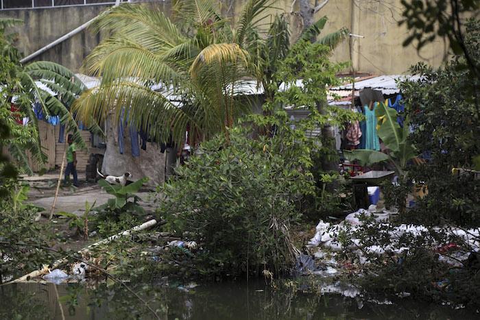 En Veracruz, un área natural protegida se vuelve un infierno de violencia y aguas negras