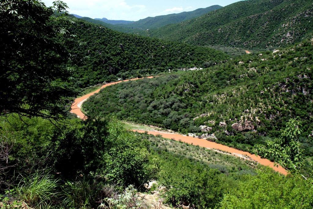Sonora: cuatro años de maldición minera