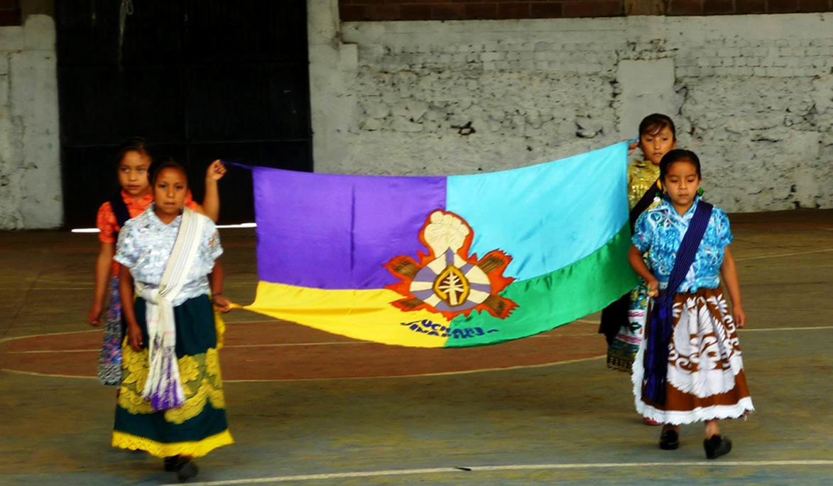 Como ilegal e ilegítima, califica el Consejo Indígena de Michoacán la consulta de la termoeléctrica