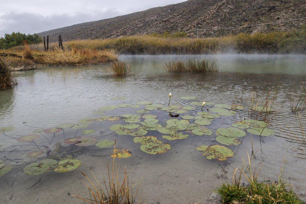 En Coahuila, 'frenan concesiones en zona protegida de Cuatro Ciénegas': Pronatura (Coahuila)
