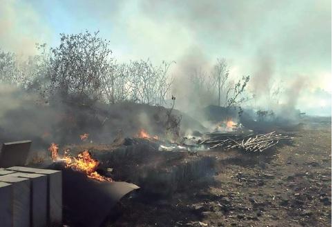 Ecocidio en Huentitán continúa: lo que sobrevivió a la tala, fue quemado (Jalisco)