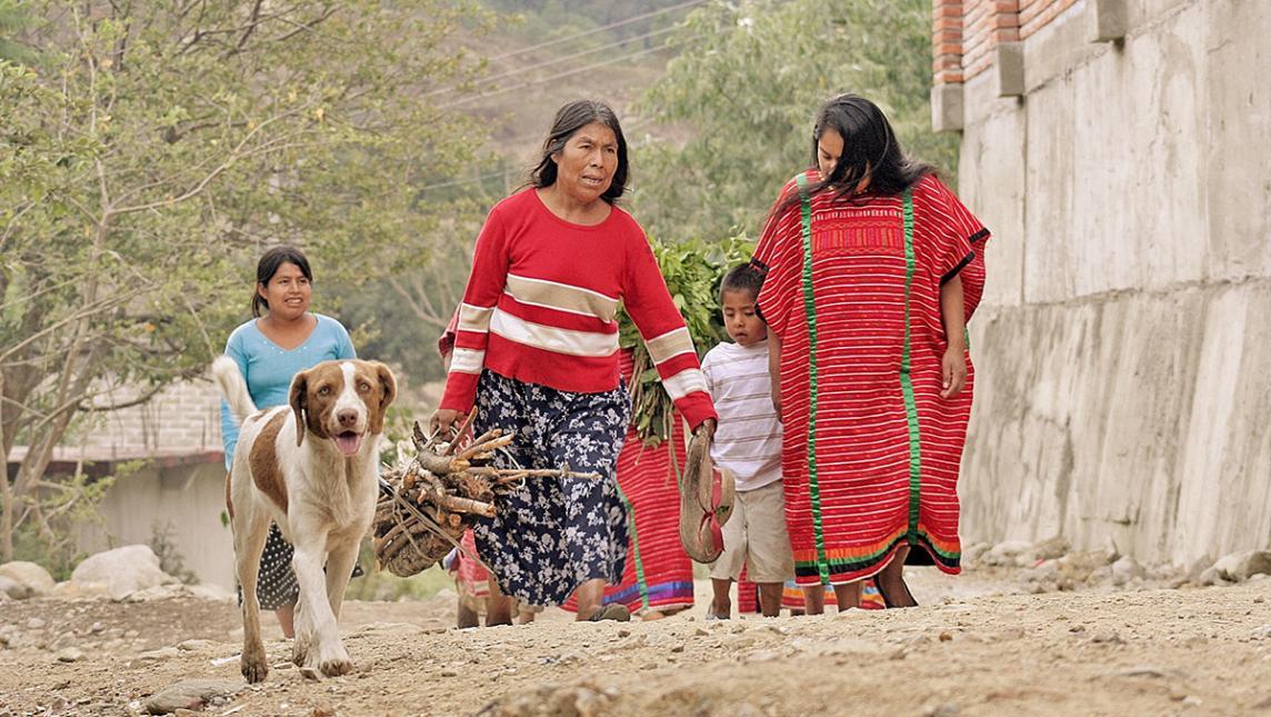 Hay en Oaxaca 2 mil desplazados indígenas