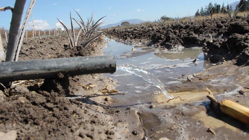 Lucha de 16 pueblos zapotecas lograr modificar decreto de veda para administrar, controlar y recuperar el agua de sus territorios (Oaxaca)