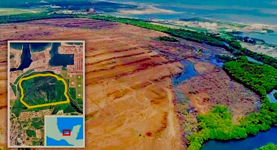 Arrasan 300 hectáreas de selva mediana perennifolia y manglar en Dos Bocas (Tabasco)
