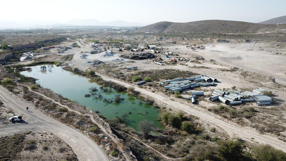 Denuncian vecinos ecocidio en Arteaga: fauna y flora en vilo (Coahuila)