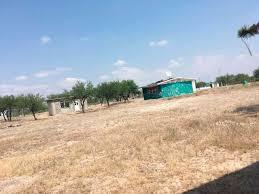 Castiga, otra vez, falta de agua a ejidos de Doctor Arroyo (Nuevo León)