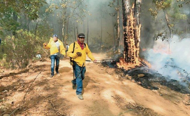 Comuneros, los héroes que con carencias combaten incendios forestales (Michoacán)