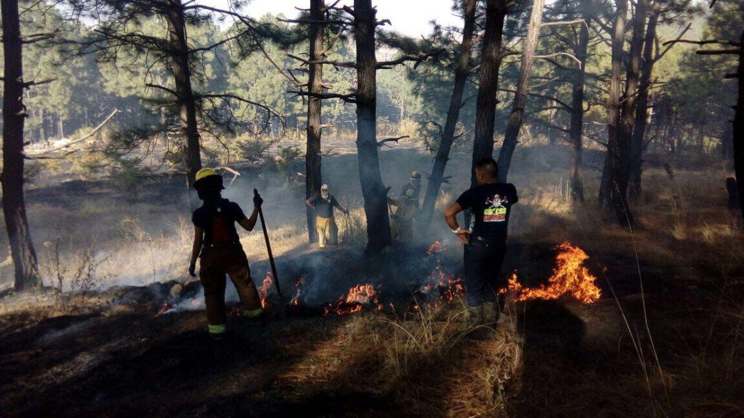 Se ubica Michoacán en el segundo lugar en incendios forestales
