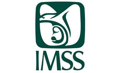 Trabajadores marchan en demandas de mejoras de hospitales del IMSS (Jalisco)