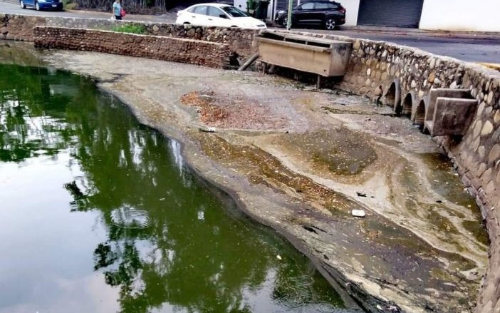 Contaminación causa muerte de peces en laguna Las Ilusiones (Tabasco)