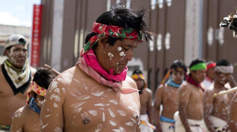 Amenazas, desplazamiento y sangre: el costo de la lucha por el territorio en Chihuahua