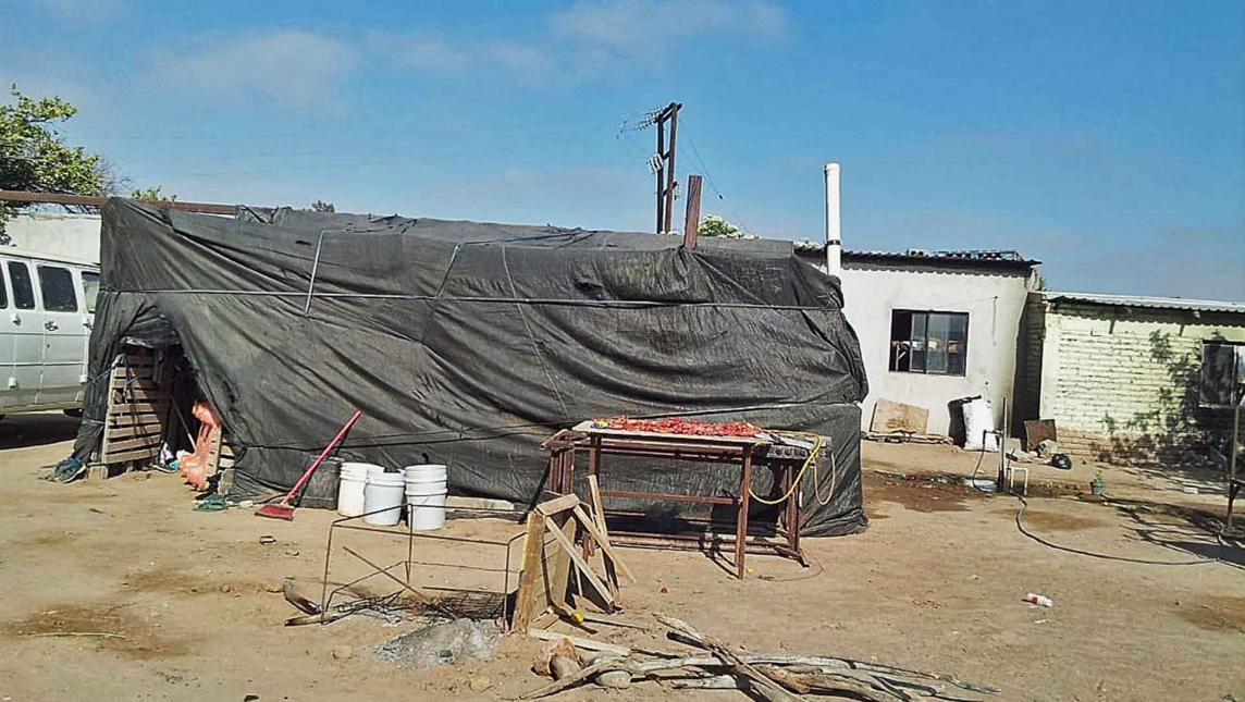 Esclavizan a oaxaqueños en Baja California
