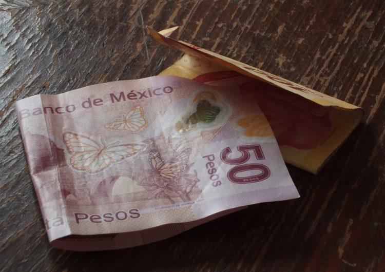 Por inflación, en Guanajuato un salario mínimo no alcanza ni para lo más básico  Fuente: https://newsweekespanol.com/2019/06/por-inflacion-en-guanajuato-un-salario-minimo-no-alcanza-para-lo-basico/ Publicado por: Jonathan Rubio