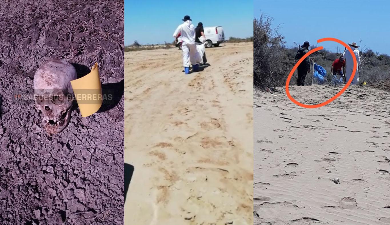 Sabuesos guerreras encuentran restos humanos en fosas clandestinas de Eldorado (Sinaloa)
