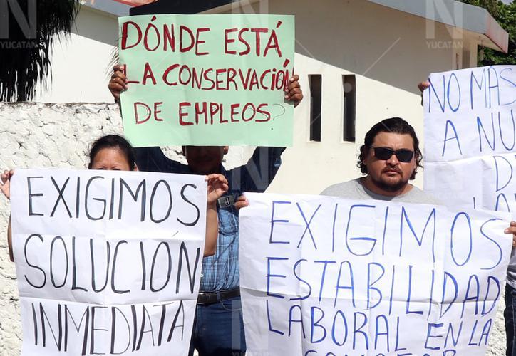 En riesgo proyectos por despidos masivos en Conafor Yucatán