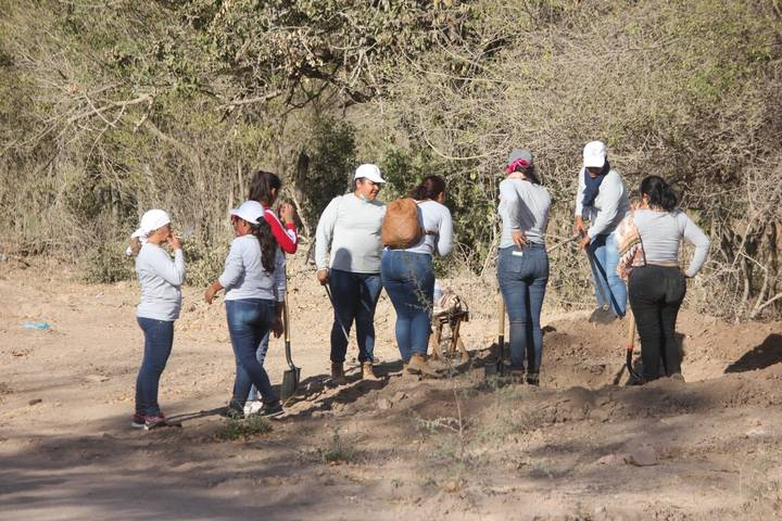 Suman 11 quejas por desapariciones forzadas en el sur de Sinaloa