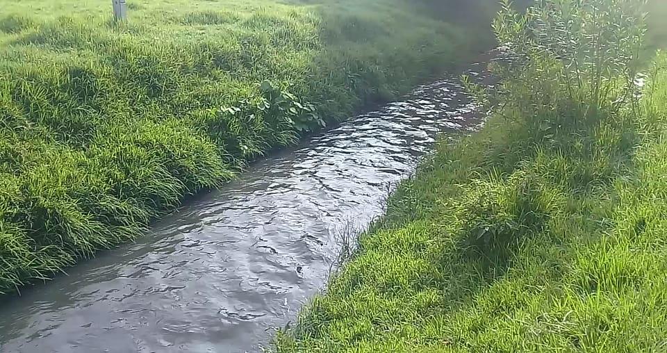 Queserías contaminan río Acotzala, acusa Texmelucan (Puebla)