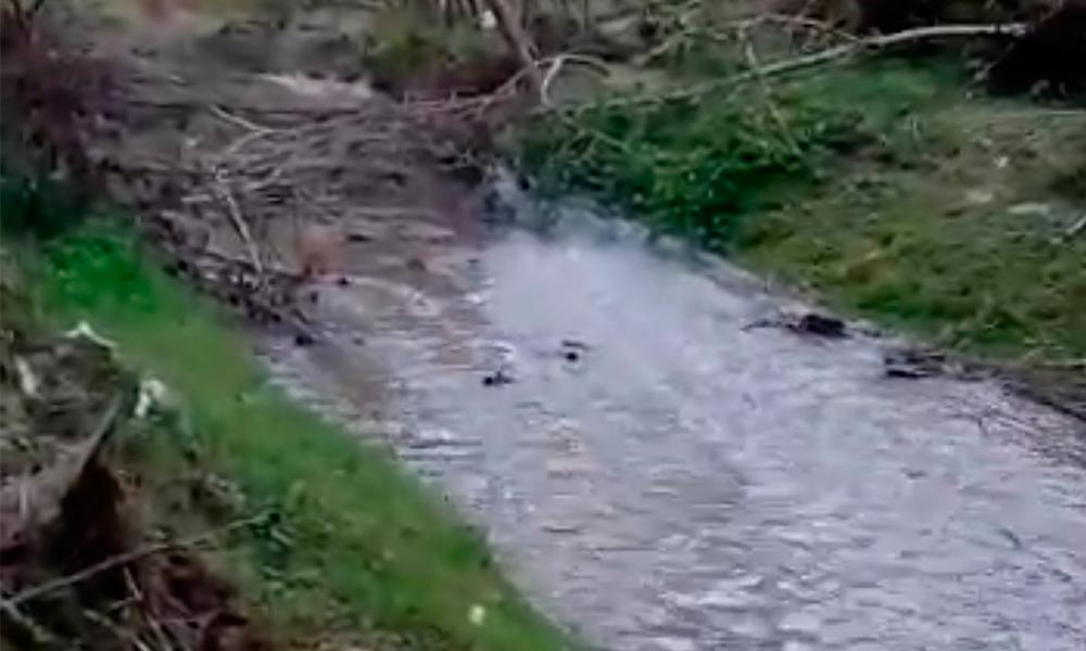 Contaminación afecta salud en Michicayucan (Puebla)