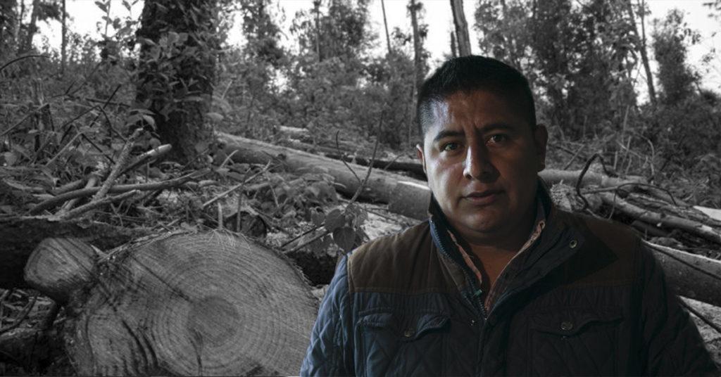 Misael Zamora, criminalizado por defender el bosque en Edomex