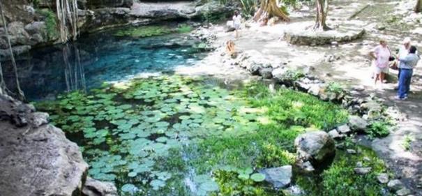 Hasta que la tierra aguante: Sector inmobiliario, turístico, industrial y energético amenazan los recursos naturales de la Península de Yucatán y pasan por encima de los derechos de comunidades mayas