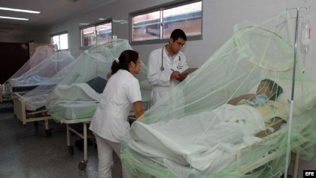 Alerta el dengue: van mil 204 casos en Jalisco y 107 en Puerto Vallarta