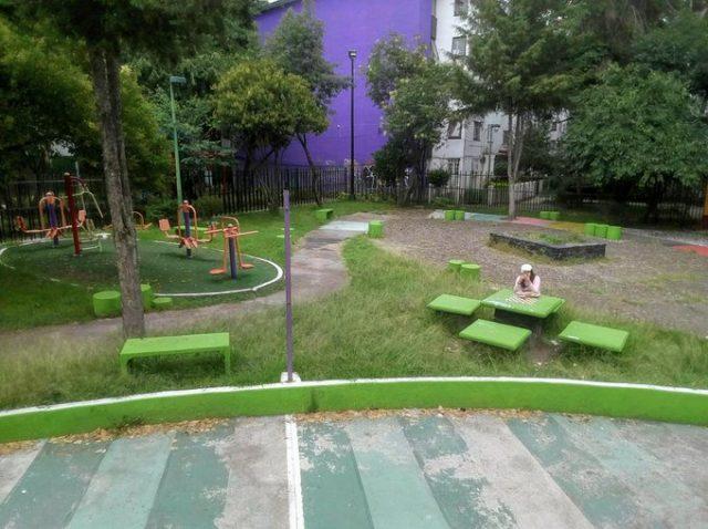 Despojan de jardín a vecinos (Ciudad de México)