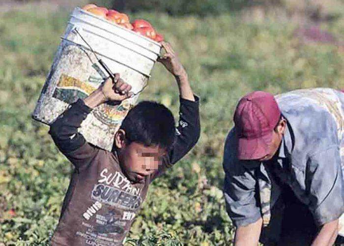 Reconocen incremento de explotación infantil (Nayarit)