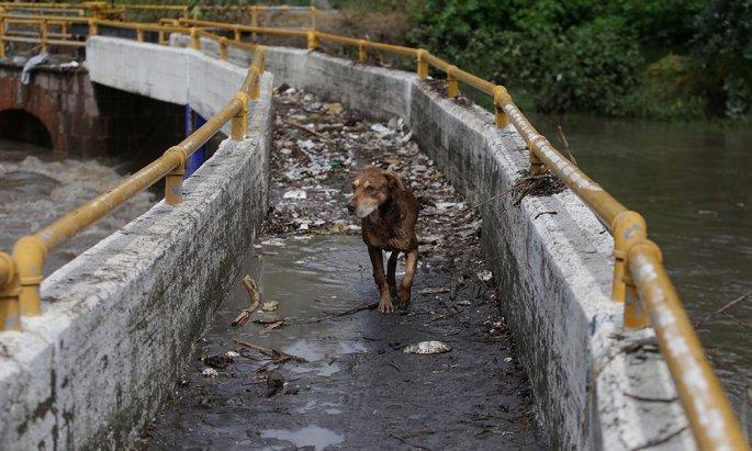 Contaminación del Atoyac, por corrupción en Puebla