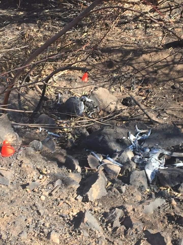 Halla colectivo de búsqueda de desaparecidos restos humanos en Tijuana (Baja California)