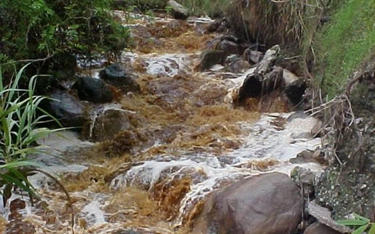 Ambientalistas atenderán contaminación del Río Blanco (Veracruz)