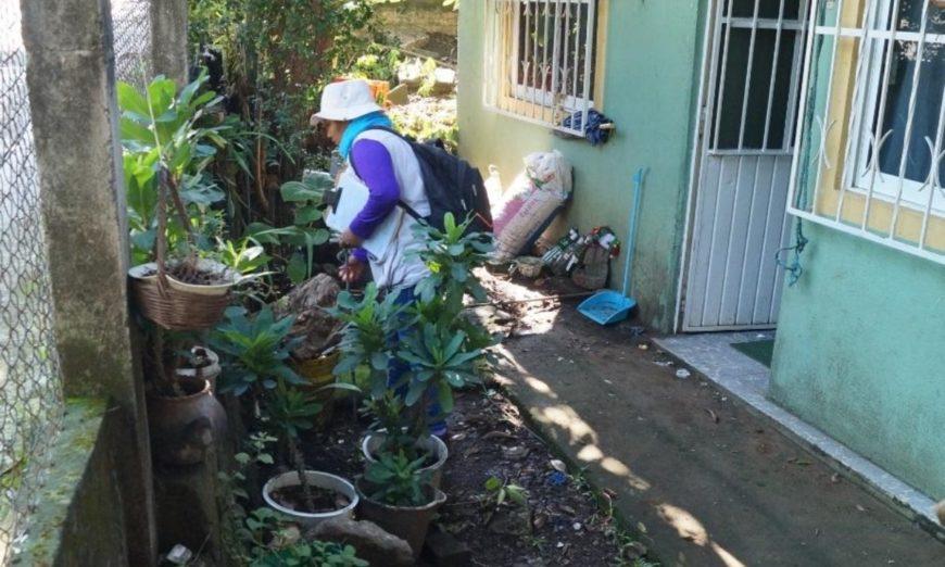 Registran más de cinco mil casos de dengue en Veracruz y desabasto de medicamentos oncológicos
