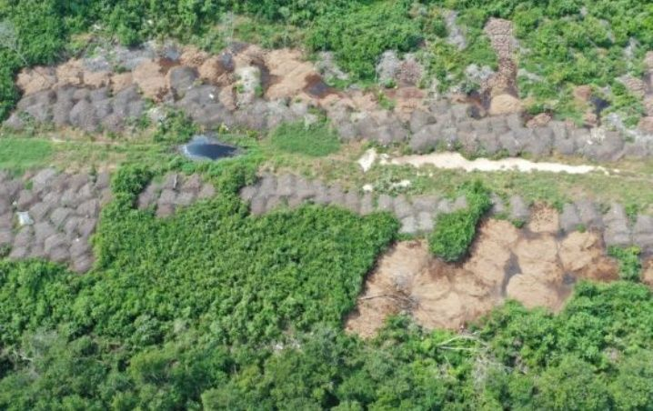 Descubren cerros de excremento afuera de un pueblo maya al poniente de Yucatán