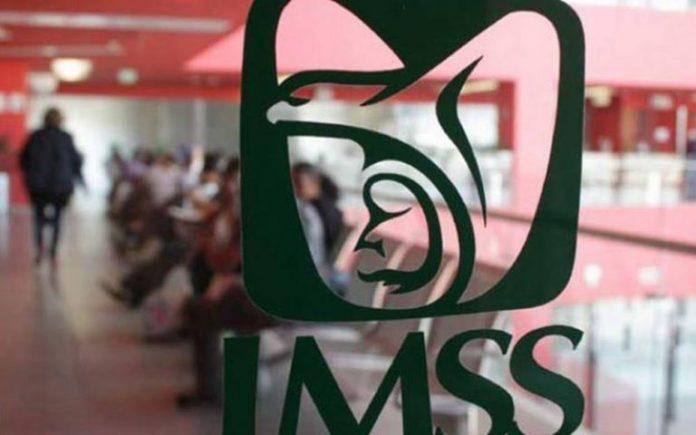 Nuevo sindicato del IMSS documenta casos de acoso laboral a médicos y enfermeras (Jalisco)