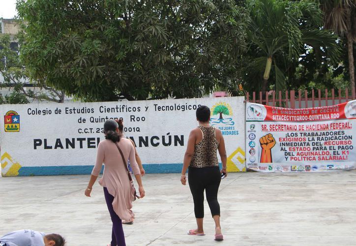 Trabajadores del Cecyte Quintana Roo, en paro de brazos caídos