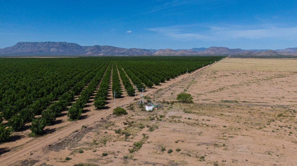 El desierto donde se trafica agua (Chihuahua)