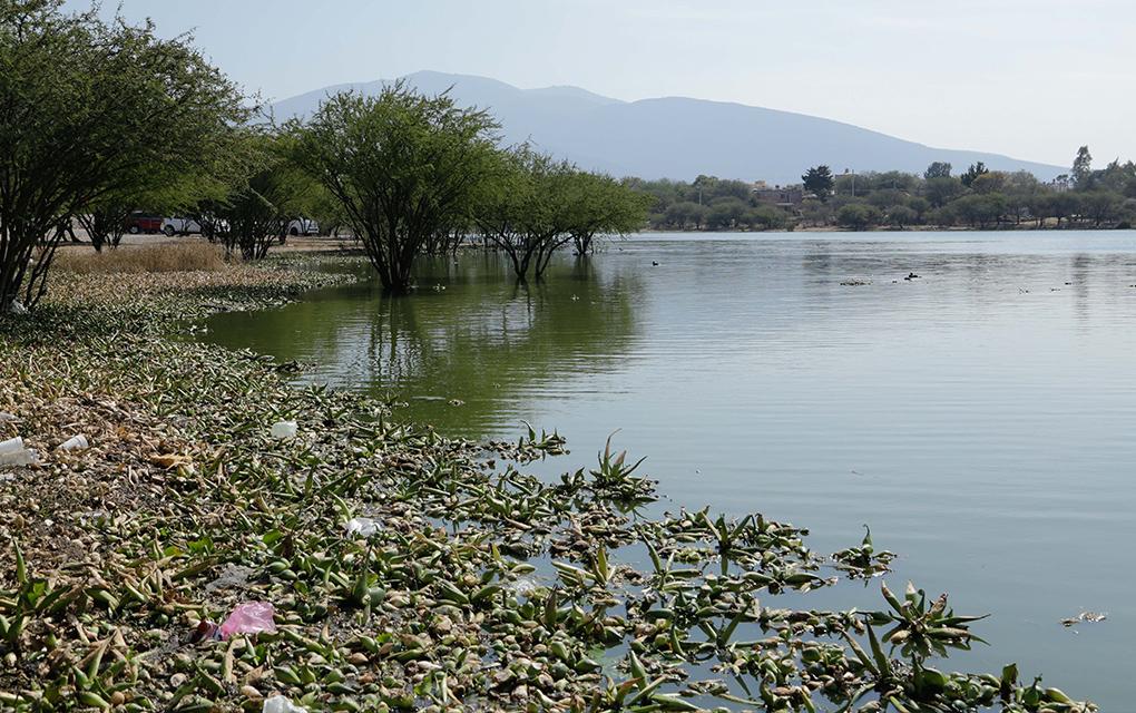 Vecinos de Santillán Tequisquiapan denuncian atropellos en subministro de agua (Querétaro)