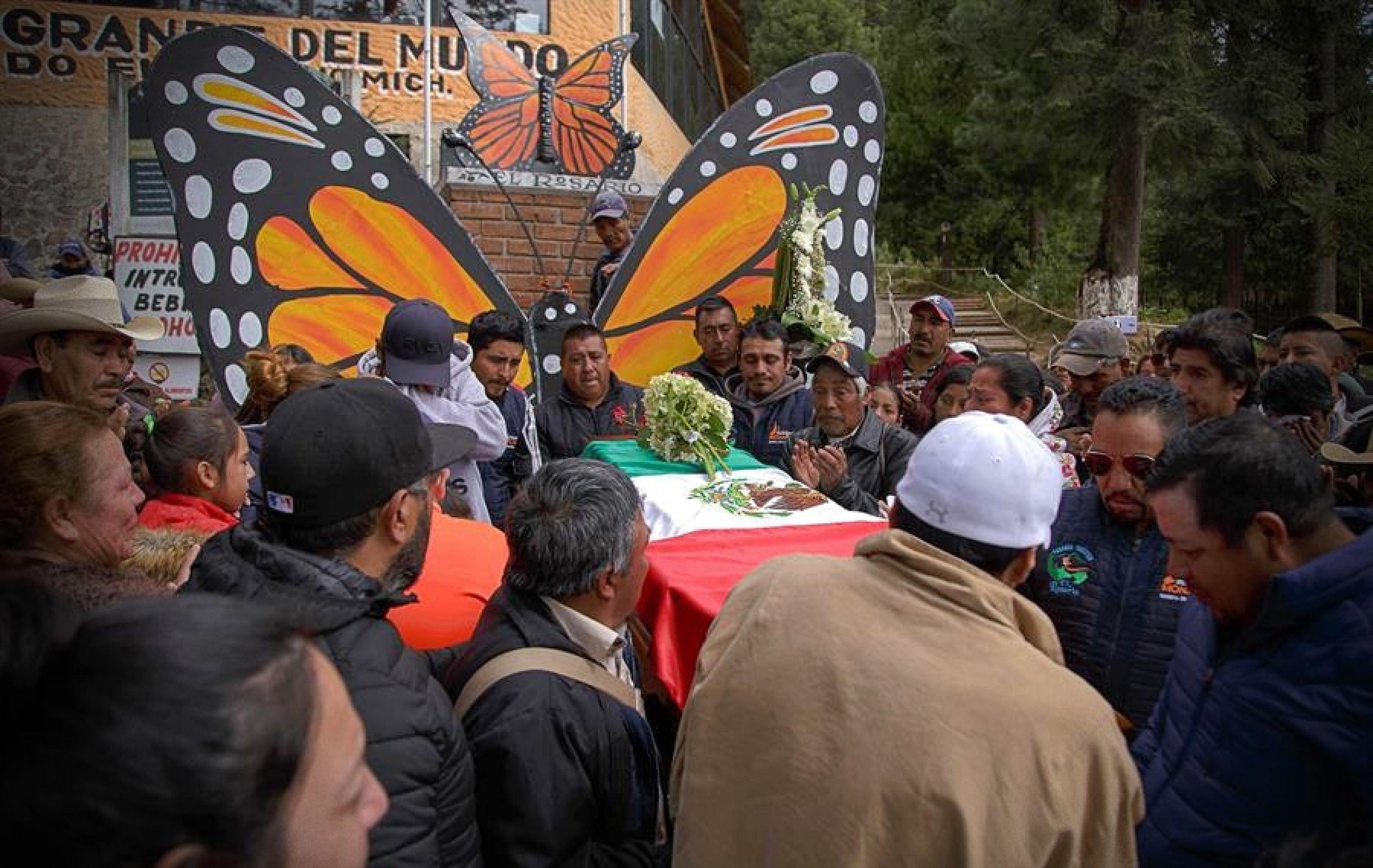 La UNESCO urge a esclarecer las muertes de dos defensores de la mariposa monarca