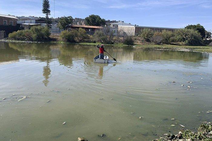 Condición del Río Lerma estaría provocando leucemia, cáncer infantil y muerte de peces en La Piedad; CEDH investiga (Michoacán)