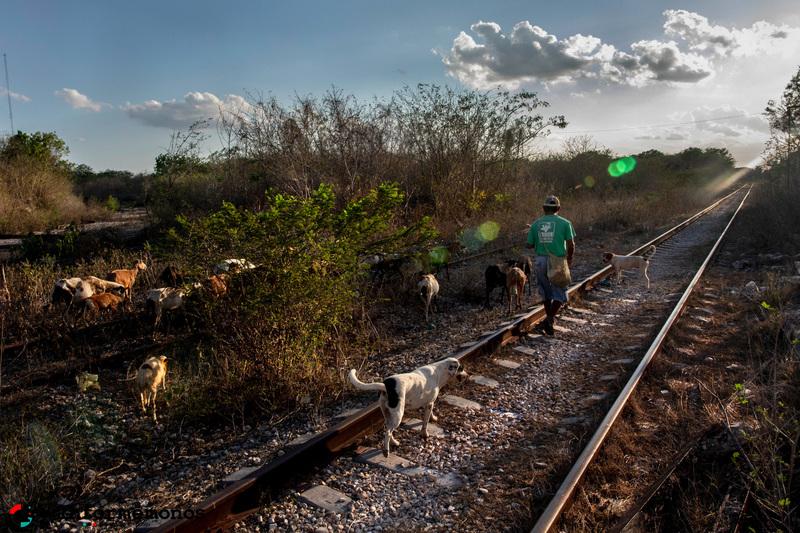 El mal llamado Tren Maya : Acaparamiento multimodal de territorios