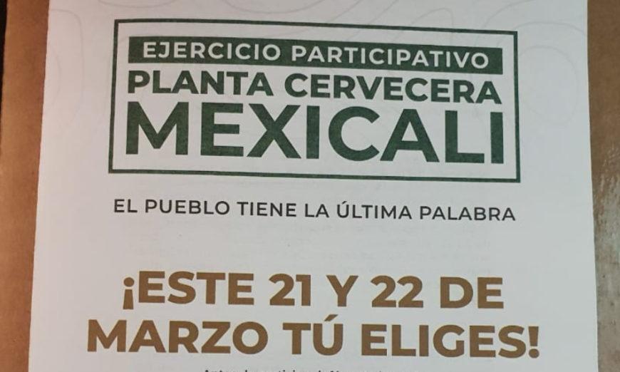 Colectivos afirman que ganaron consulta contra Constellation Brands, pero dejan anuncio a AMLO (Baja California)