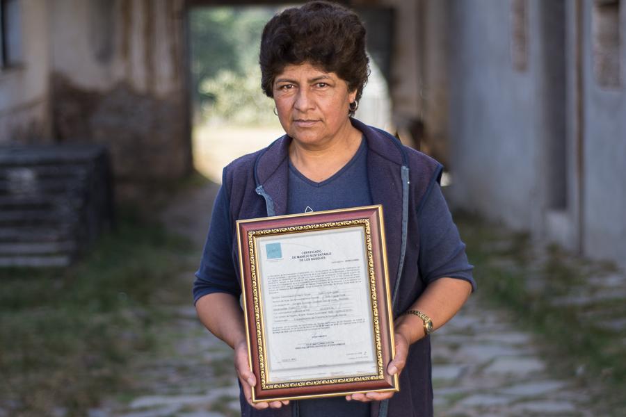 Defender a un bosque del acecho de la minería (Puebla)