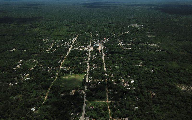 Piden que se detengan obras del Tren Maya en Yucatán por emergencia sanitaria