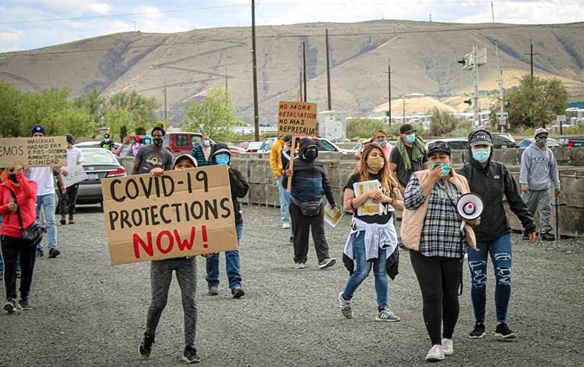 Protestan empacadores de manzanas Washington en USA