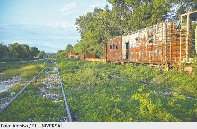 Gobierno va por desmontar más de 11 mil árboles en fase 1 del Tren Maya