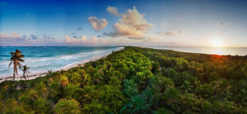 En riesgo más de 8 millones de hectáreas de Áreas Naturales Protegidas en Yucatán y QR por reducción presupuestal de Conanp